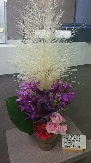 http://www.s-shika-clinic.com/asset/ad034479b34ca845407cc77f528ca22553a218c8.jpg