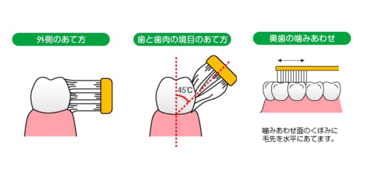 http://www.s-shika-clinic.com/asset/image1%20%2810%29.JPEG