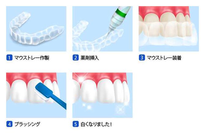 https://www.s-shika-clinic.com/asset/img07.jpg