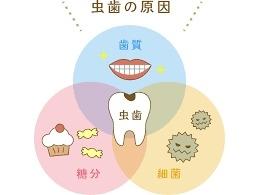 http://www.s-shika-clinic.com/asset/yjimage.jpg